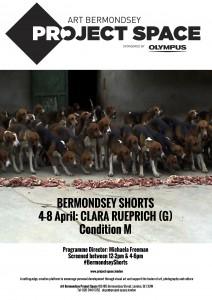 BERMONDSEY SHORTS(1)